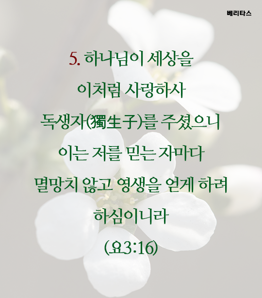 bible_06