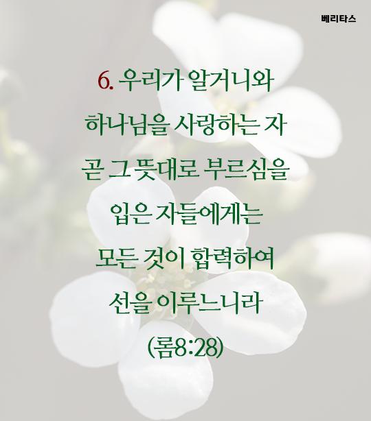 bible_07