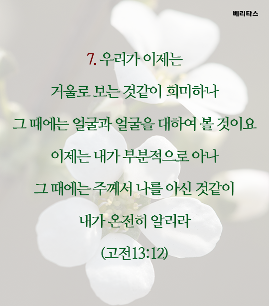 bible_08