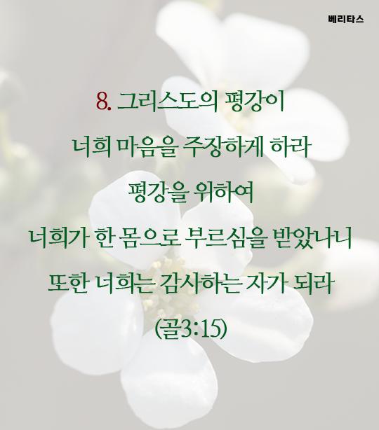 bible_09