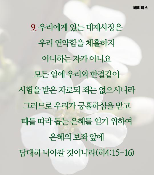 bible_10