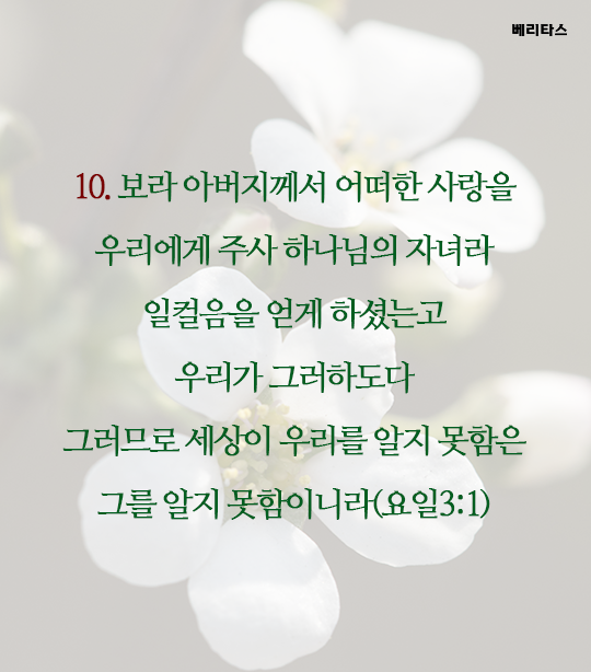 bible_11