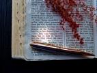 bible_02