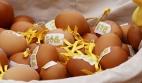 egg_02