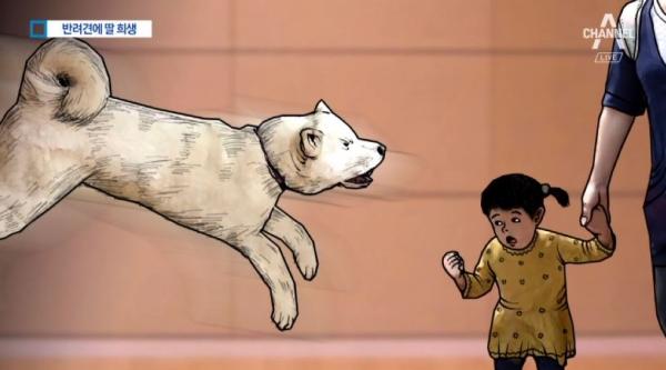 dog_1010