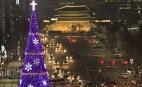 서울 광장 환히 밝힌 성탄트리